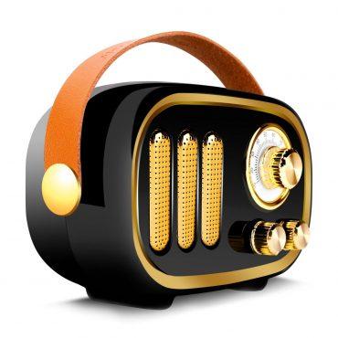Parlante Portable Wesdar K56 Black